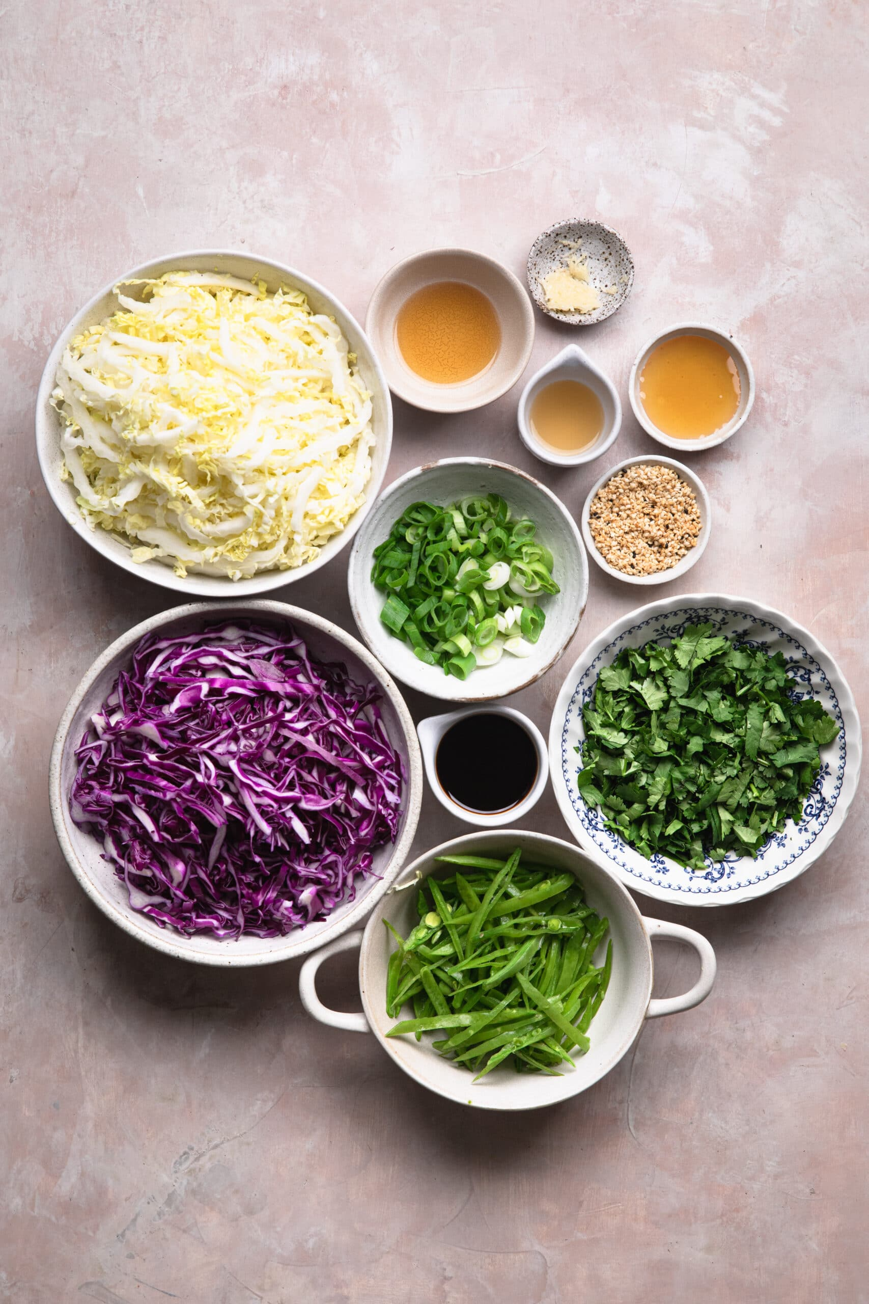 ingredients you need to make asian style slaw