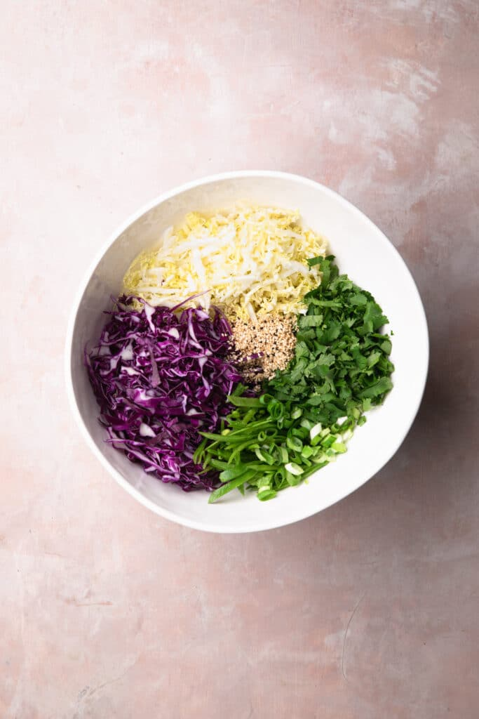 finely sliced red cabbage, wombok cabbage, sesame seeds, snow peas, coriander and spring onions in a large bowl